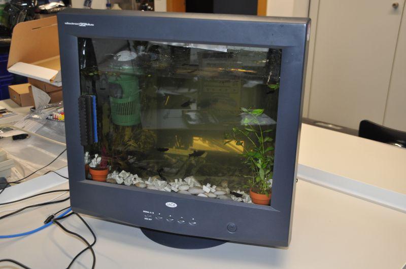 aquarium profis